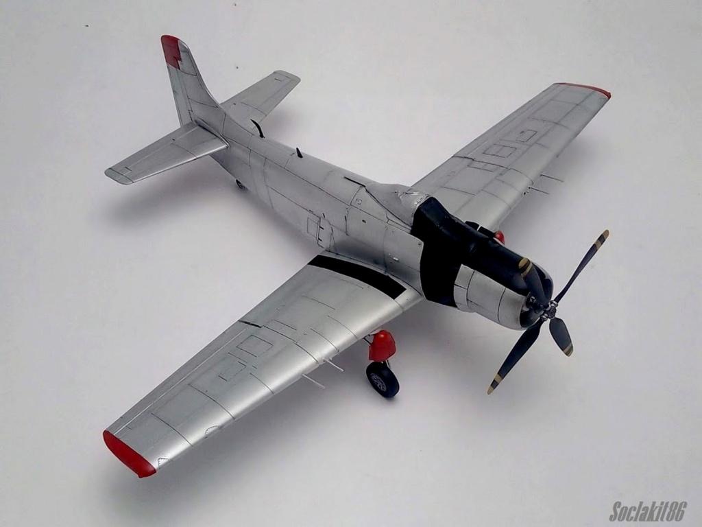 AD-4 Skyraider n°123895 /SFERMA 110 de l'EC 3/20  (Tamiya 1/48) - Page 2 M4224