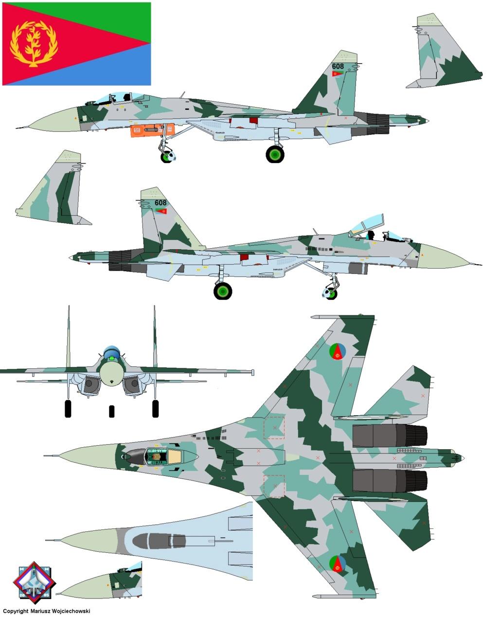 Les géants des airs : Northrop YB-49 [Italeri 1/72] - Page 3 Su27s610