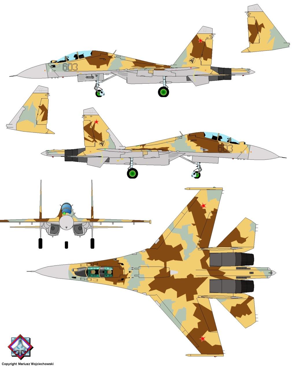 Les géants des airs : Northrop YB-49 [Italeri 1/72] - Page 3 Su30mk10