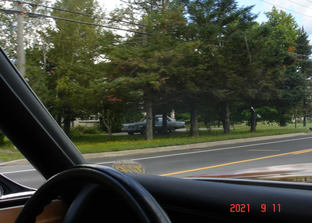 Sur ma route j'ai vu ...... Prise 5 - Page 35 Dsc06420