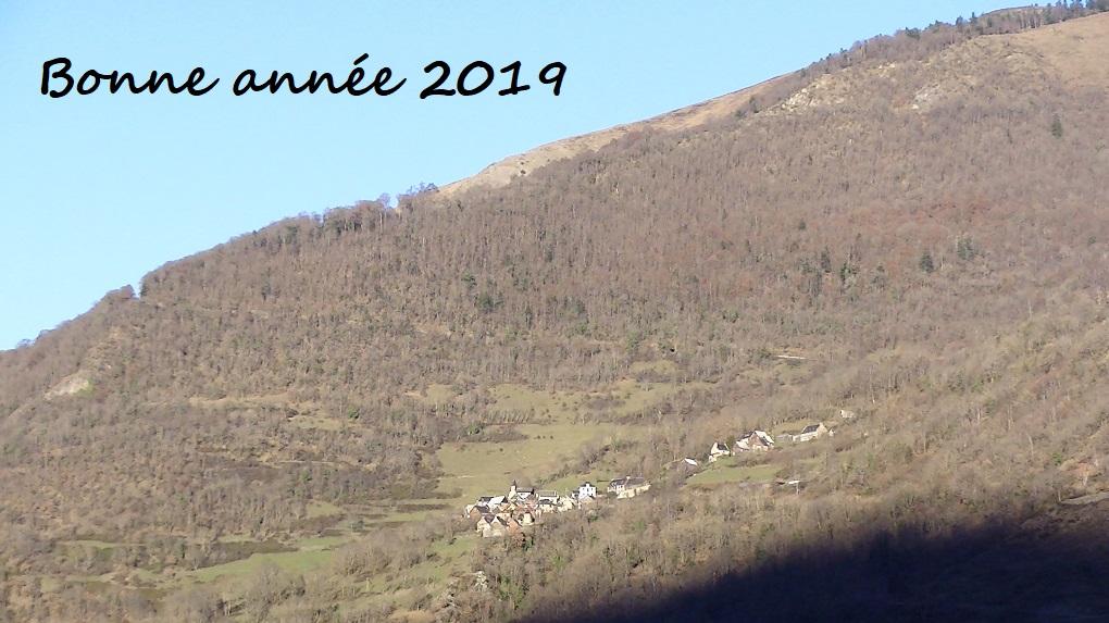 bonjour Pic_0111