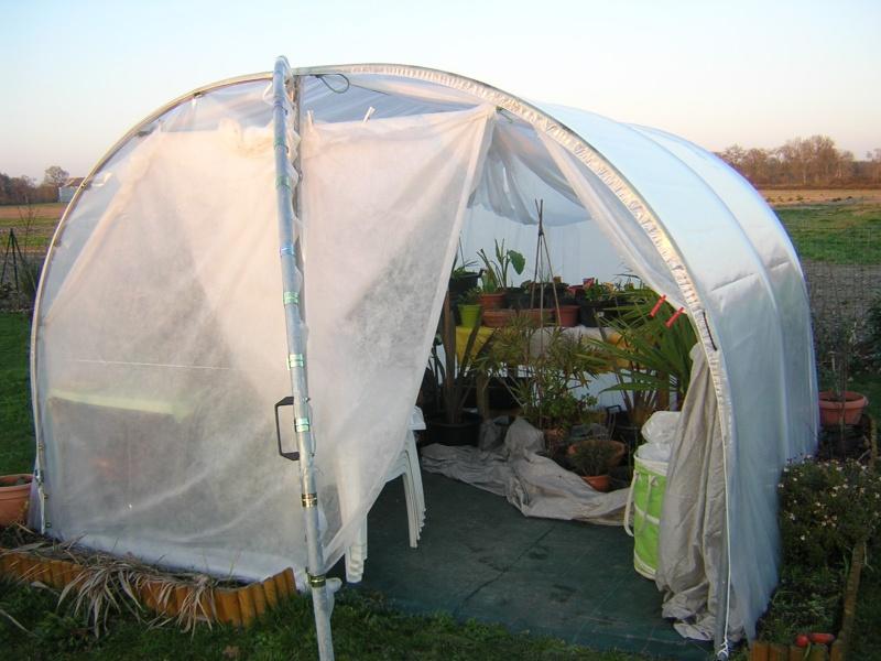 comment on protège les plantes contre le froid Dscn0315