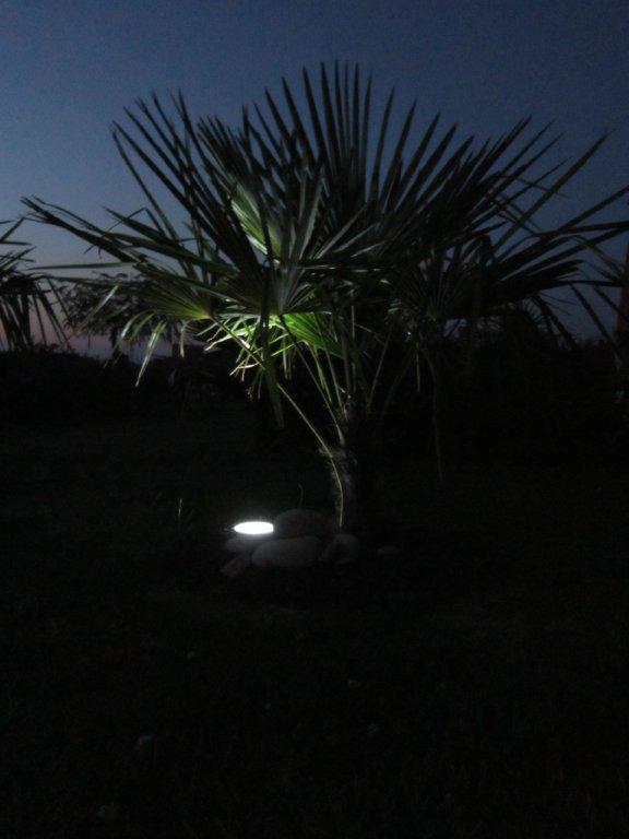 Eclairage des plants Img_1027