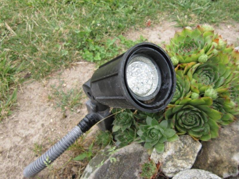 Eclairage des plants Img_1030