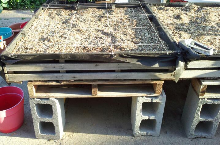 Trellis ideas for TT on driveway/cement 2012-010