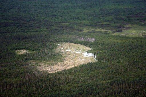 [Canada] - Le plus grand barrage de castors découvert grâce à Google Earth Barrag10