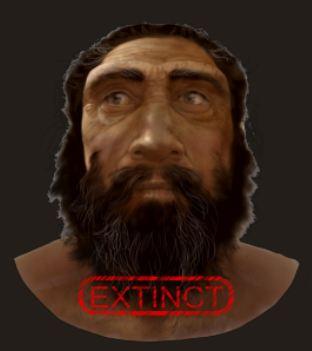 l'image de l'homme préhistorique - Page 7 Exctin10
