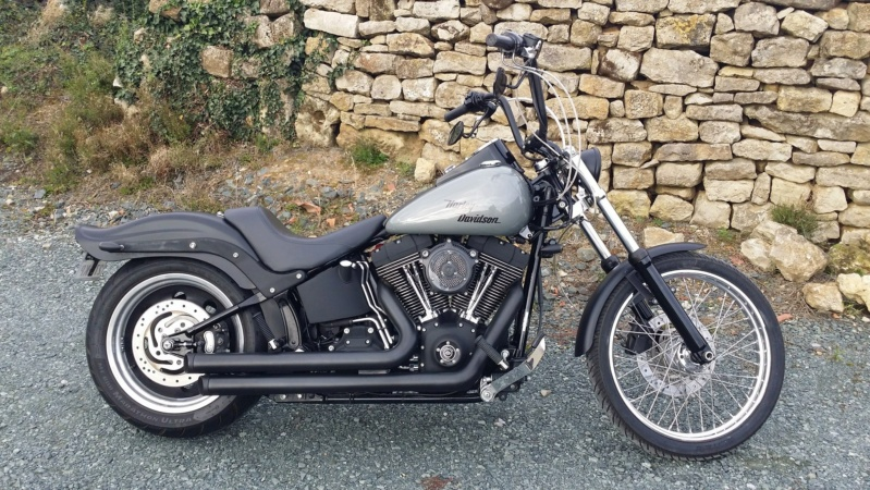 softail standard ou custom  12203614