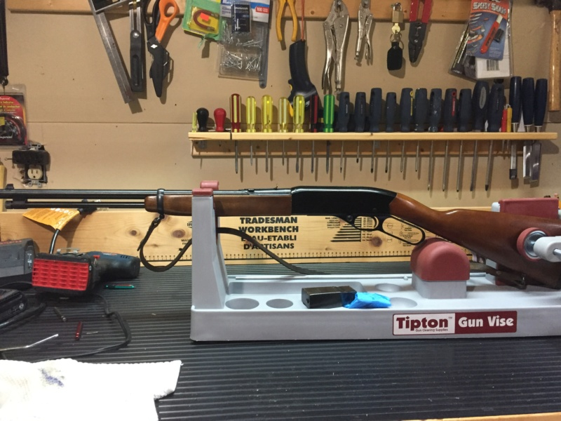 Winchester Model 150 22lr Img_0813