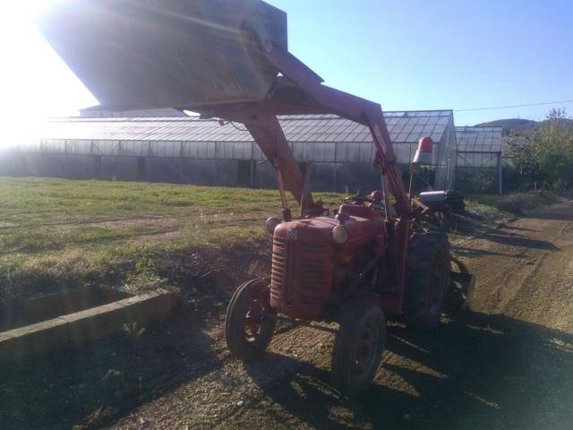 nouveau tracteur...IH 137 - Page 2 Img_2080