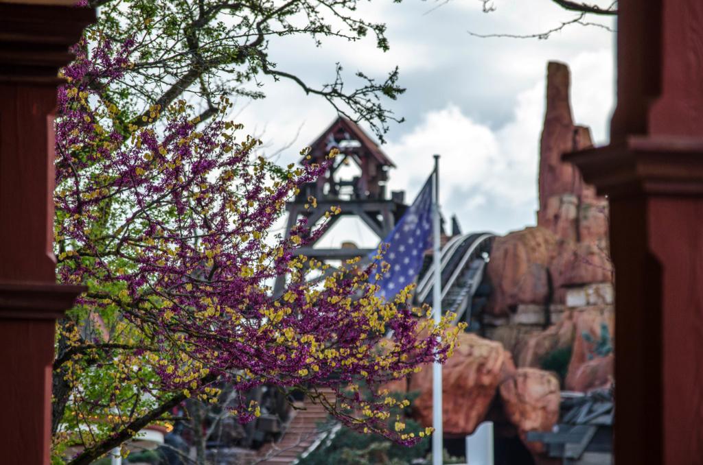Photos de Disneyland Paris en HDR (High Dynamic Range) ! - Page 26 Dsc_0611