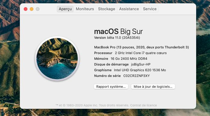macOS Big Sur 11 / 11.1 / 11.2 / 11.3 (Beta) - Page 5 Captu105