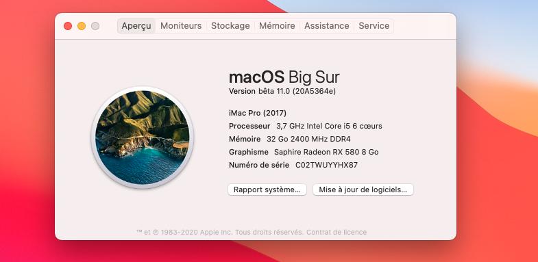 macOS Big Sur 11 / 11.1 / 11.2 / 11.3 (Beta) - Page 6 Captu110