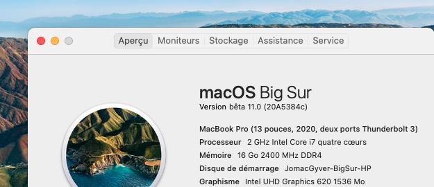macOS Big Sur 11 Beta - Page 9 Captu120
