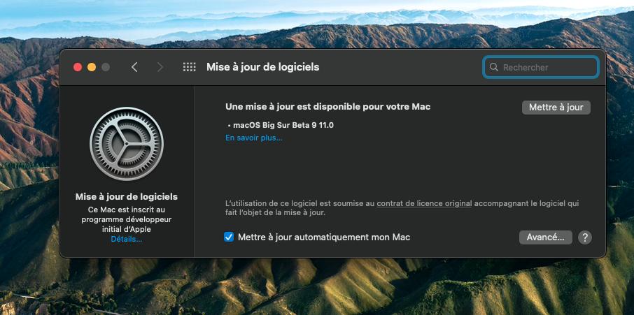 macOS Big Sur 11 Beta - Page 9 Captu121