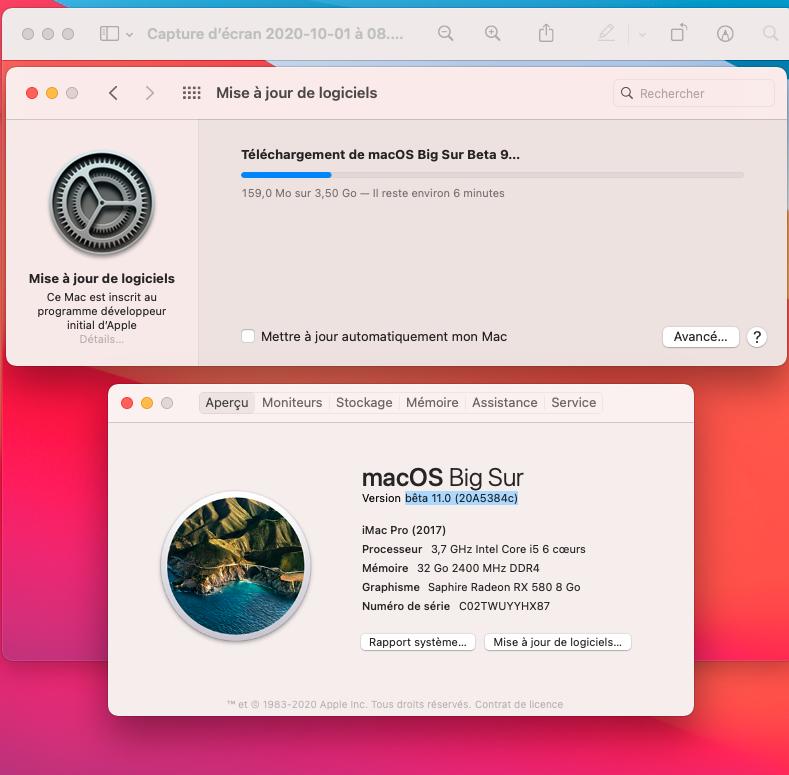 macOS Big Sur 11 Beta - Page 9 Captu122