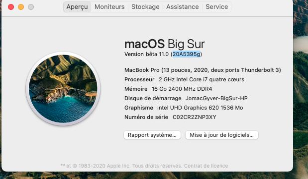 macOS Big Sur 11 Beta - Page 9 Captu123