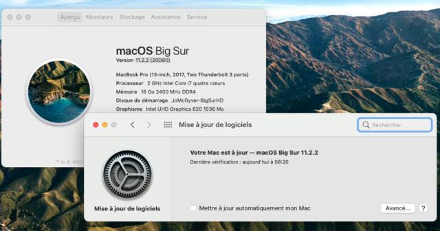 Mise a jour Big Sur 11.2.2 (20D80) Captu177