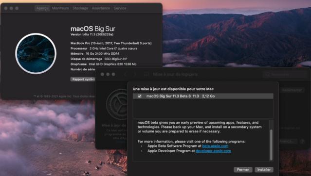 macOS Big Sur 11 / 11.1 / 11.2 / 11.3 / 11.4 / 11.5 /(Beta) - Page 17 Captu183