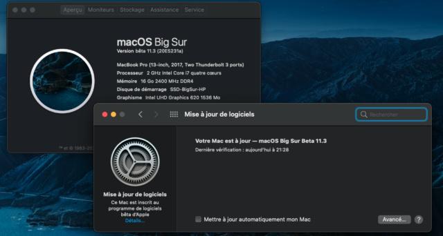 macOS Big Sur 11 / 11.1 / 11.2 / 11.3 / 11.4 / 11.5 /(Beta) - Page 17 Captu184