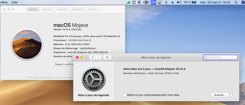 macOS Mojave 10.14.4 Finale version (18E226)  Captur42