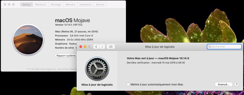 macOS Mojave 10.14.5 Finale version  (18F132 ) Captur46