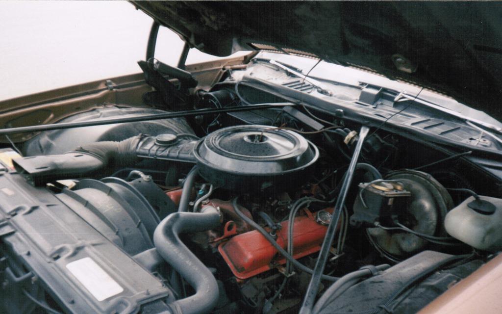 Malibu like new, 43 years in garage. Canada Engine10