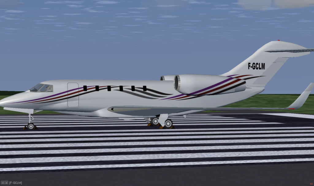 Citation X - Page 21 Fgfs-s33