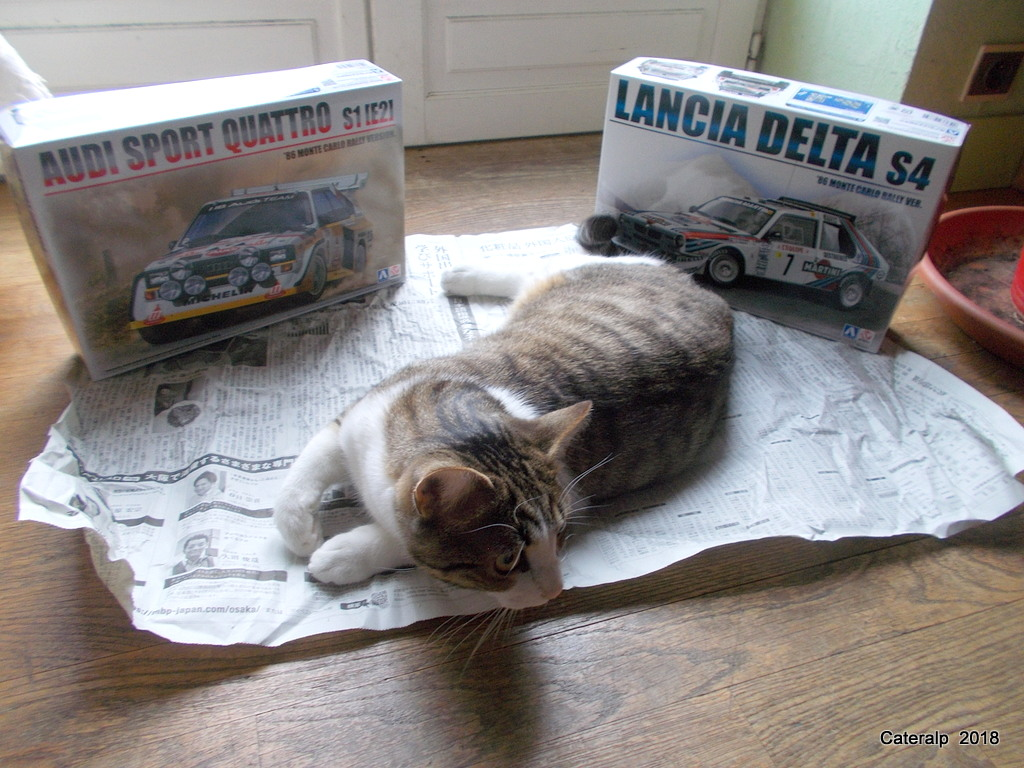 [Aoshima Beemax ] 1/24 Lancia Delta S4 Rallye de Monte Carlo 1986 Lancia47