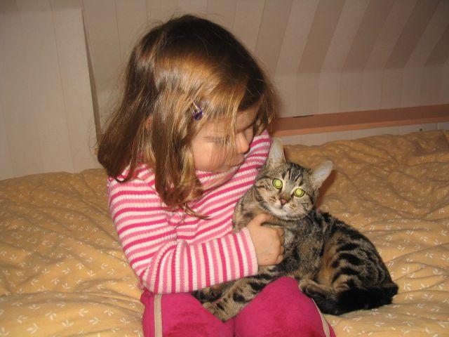 Des chats superbes ! - Page 85 Ath_ch10