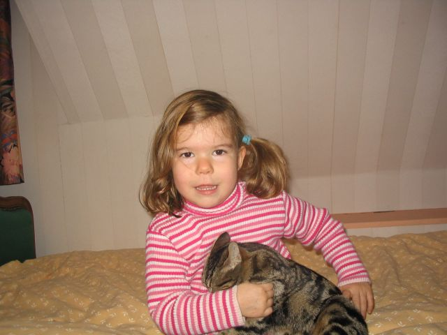 Des chats superbes ! - Page 85 Img_2610