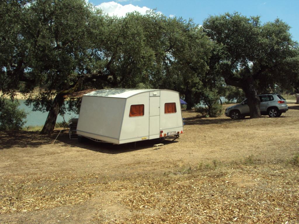 VENDUE Rapido Export 1981 à vendre pour restauration  Dsc03411