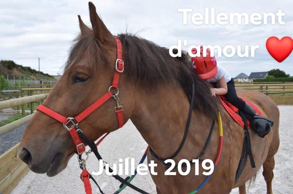 Dpt 70 - Cidjy de la Fontaine - ONC Comtoise - Sauvée par elise-et-delice (Mars 2013) - Page 15 210