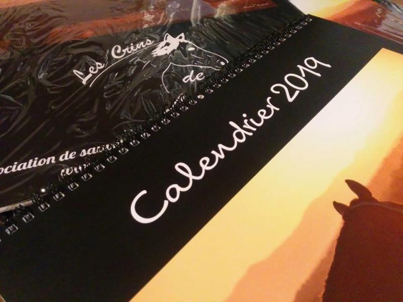 Calendrier 2019 !!! 46513110