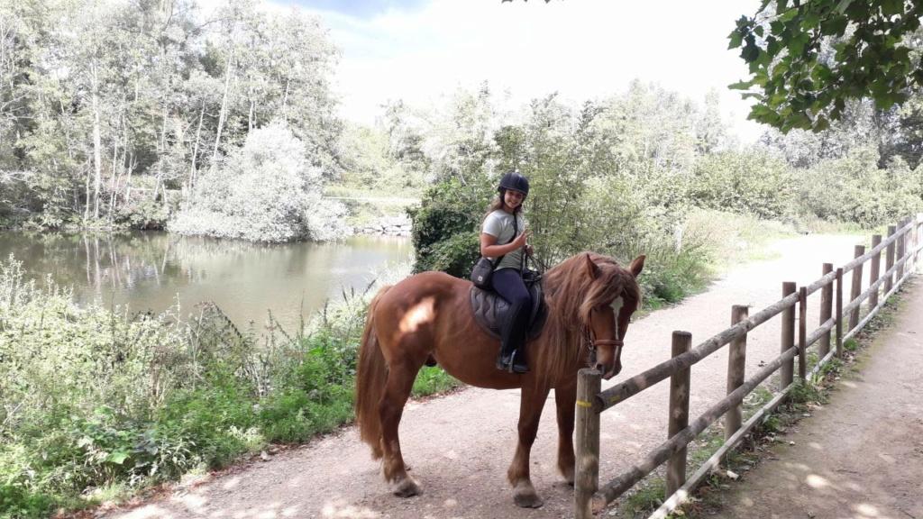 (Dept 71) 4 ans - GASPARD (Mistral) - ONC T - Mâle -Réservé par Nadine E. (avril 2020) Img_1523