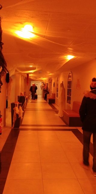Hôtel B&B Magny Le Hongre - Page 11 45411311