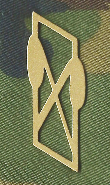 Ranks, badges, patches, epaulets of the Swiss Armed Forces - Page 9 Abc-la10