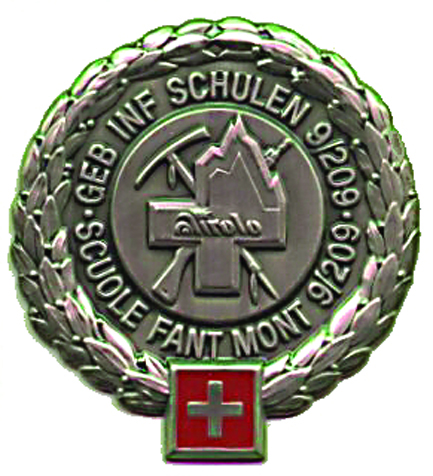 Ranks, badges, patches, epaulets of the Swiss Armed Forces - Page 18 Berete17