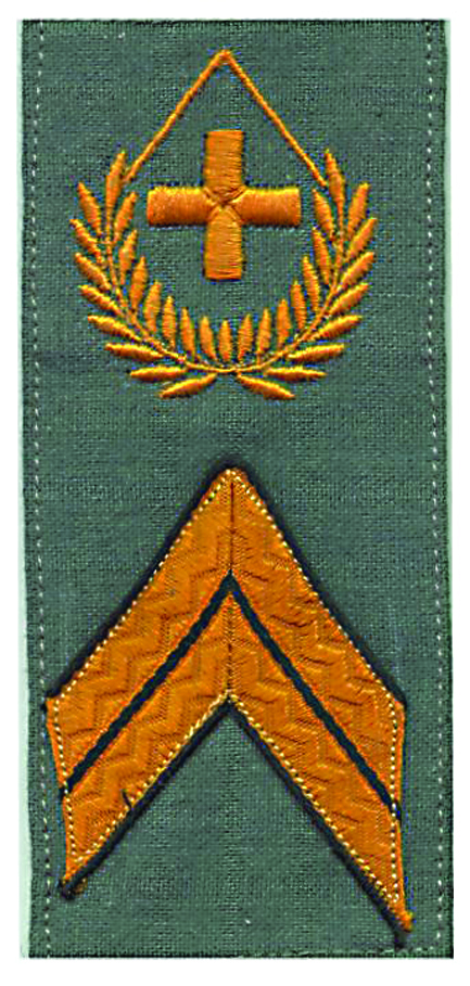 Ranks, badges, patches, epaulets of the Swiss Armed Forces - Page 14 Feldwe12