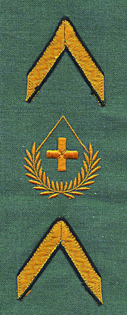 Ranks, badges, patches, epaulets of the Swiss Armed Forces - Page 14 Fourie14