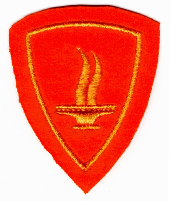 Ranks, badges, patches, epaulets of the Swiss Armed Forces - Page 15 Fuerso11