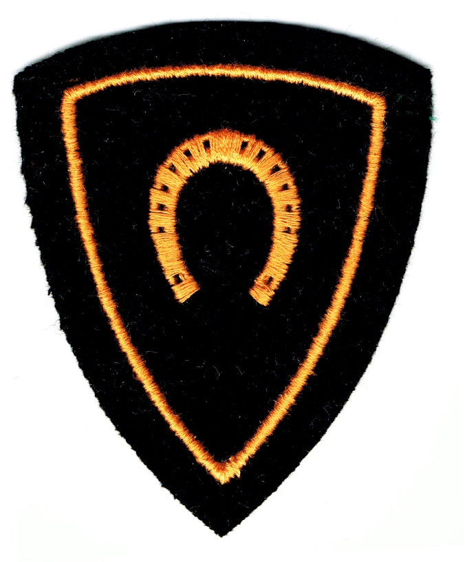 Ranks, badges, patches, epaulets of the Swiss Armed Forces - Page 15 Hufsch11