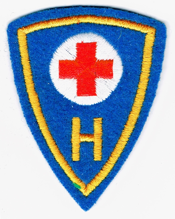 Ranks, badges, patches, epaulets of the Swiss Armed Forces - Page 15 Hygien10