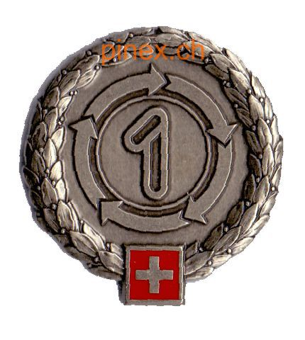Ranks, badges, patches, epaulets of the Swiss Armed Forces - Page 5 Logist10