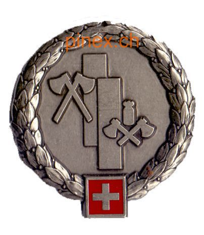 Ranks, badges, patches, epaulets of the Swiss Armed Forces - Page 8 Lvb_re11