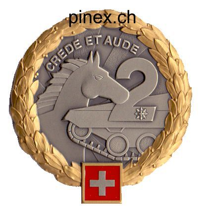 Ranks, badges, patches, epaulets of the Swiss Armed Forces - Page 5 Panzer18