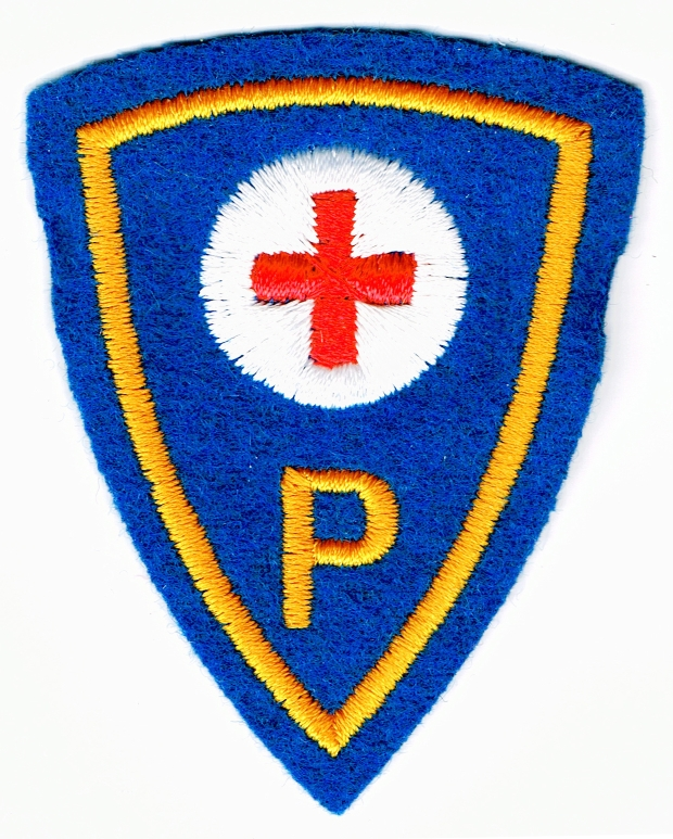 Ranks, badges, patches, epaulets of the Swiss Armed Forces - Page 16 Physio10