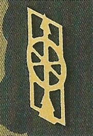 Ranks, badges, patches, epaulets of the Swiss Armed Forces - Page 9 Trains10