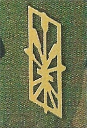 Ranks, badges, patches, epaulets of the Swiss Armed Forces - Page 9 Versor11