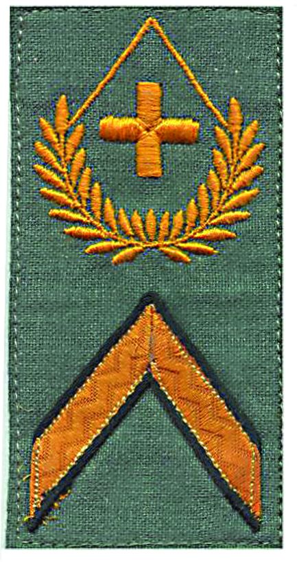 Ranks, badges, patches, epaulets of the Swiss Armed Forces - Page 14 Wachtm15